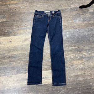 BKE Denim Payton Dark Wash Skinny Jeans